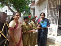 """NCC cadets distributed saplings on account of """"World Environment Day"""""""